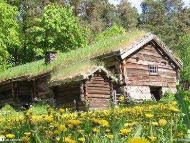 Eko talne in stenske obloge