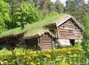 Ekološka streha